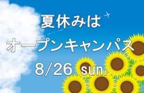 summer_oc